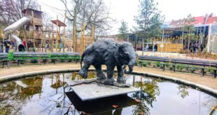 Why Zoo Antwerpen is One of the Best Places of Interests to Visit in Antwerp