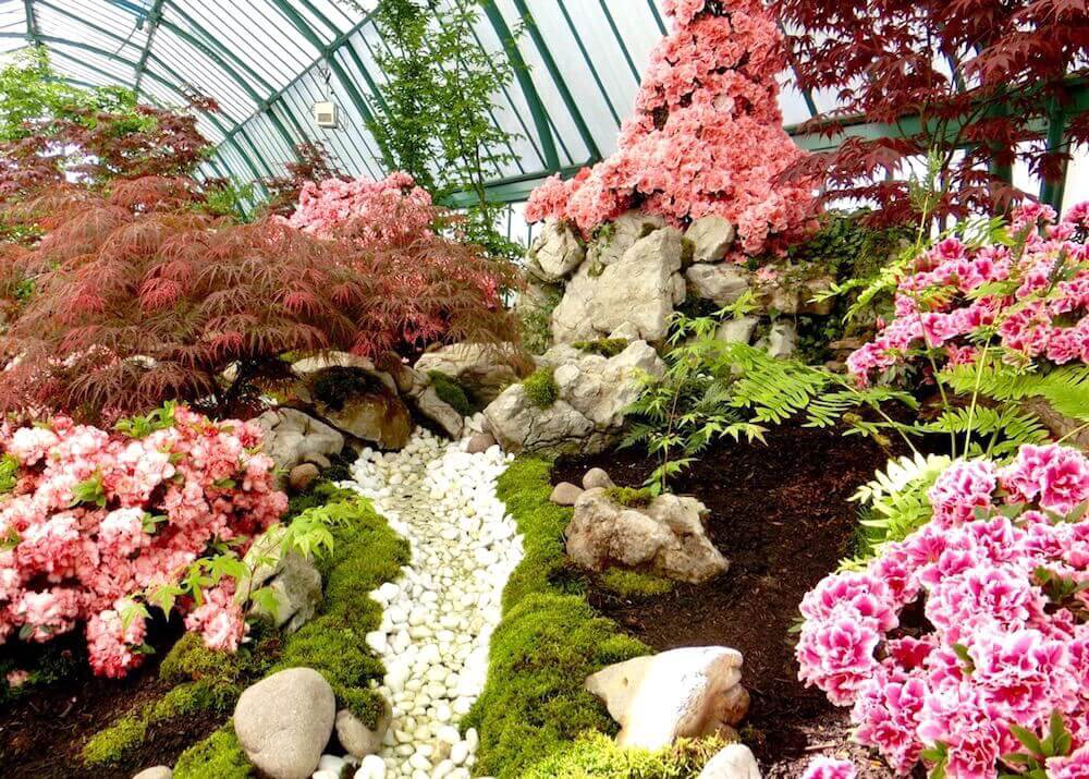 Azalea Greenhouse Garden @ Royal Greenhouses of Laeken