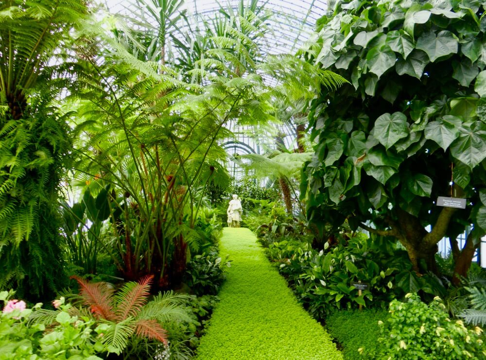 Diana Greenhouse @ Royal Greenhouses of Laeken