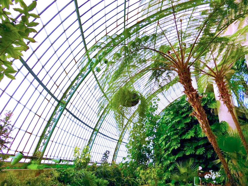 Winter Garden Dome @ Serres Royales de Laeken