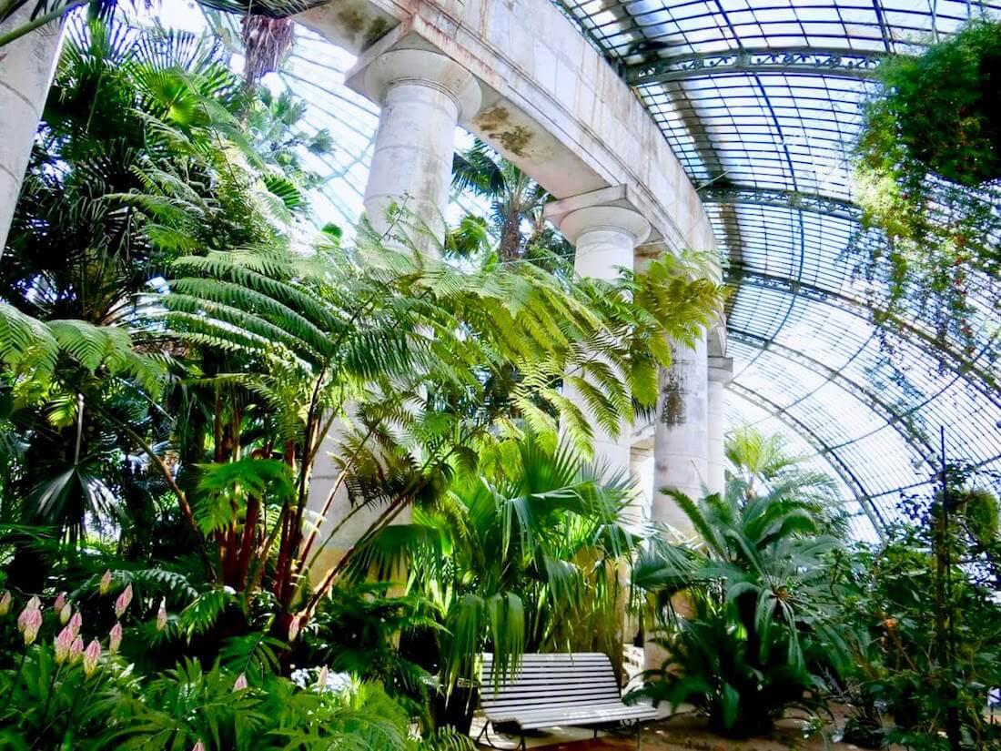 Winter Garden Interior @ Koninklijke Serres van Laken