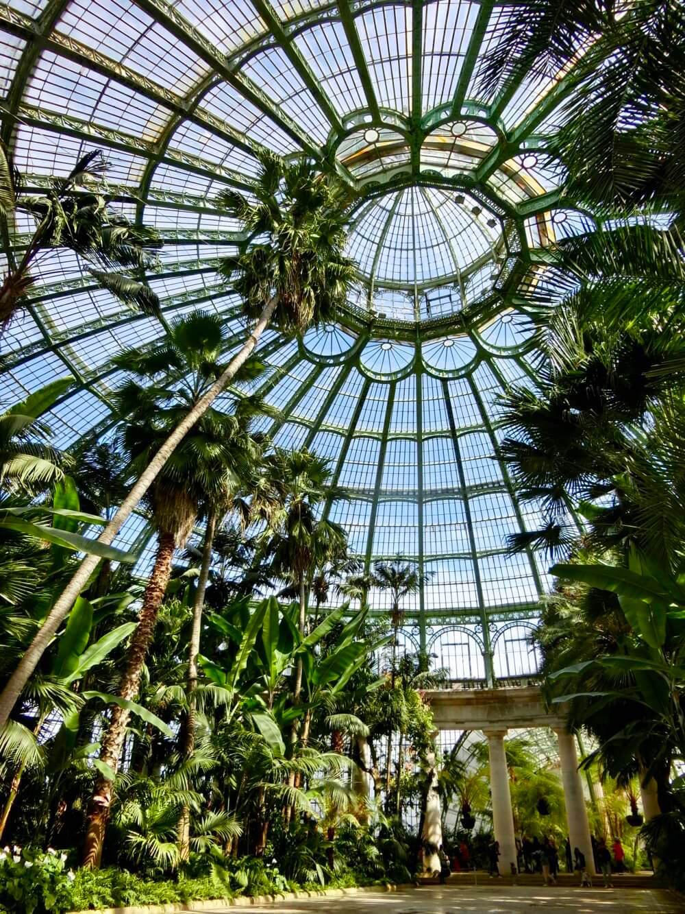 Winter Garden @ Royal Greenhouse of Laeken